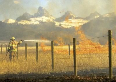 grassfirekenlevy68-1